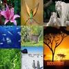 Conservational biodiversity