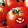 Food Organic Chemistry