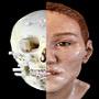 Forensic Anatomy