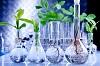 Genetic engineering application