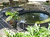 Home Aquaculture