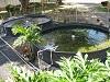 Home Aquaculture