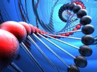 Molecular Biomarkers