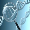 Molecular Genetic Test