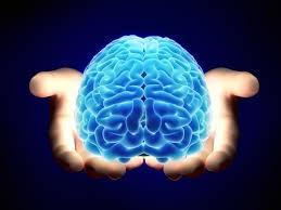Neurorobotics