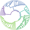 Phylogenetic Analysis