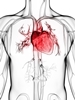 Translational Research for Cardiovascular Diseases
