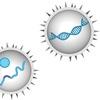 Virology Techniques
