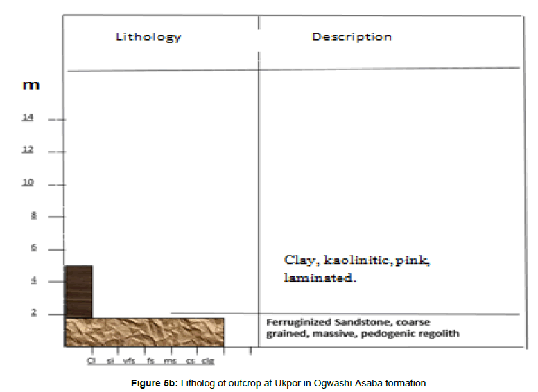 Earth-Science-Litholog-outcrop