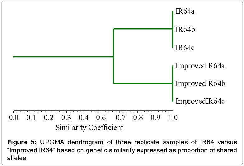 Evolutionary-Biology-based-genetic-similarity-expressed-proportion