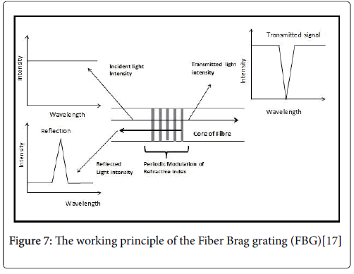 Optometry-Fiber-Brag
