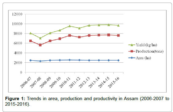 Rice-Research-production-productivity