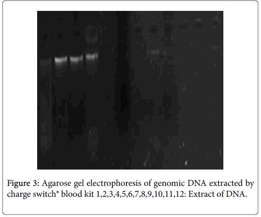Science-genomic