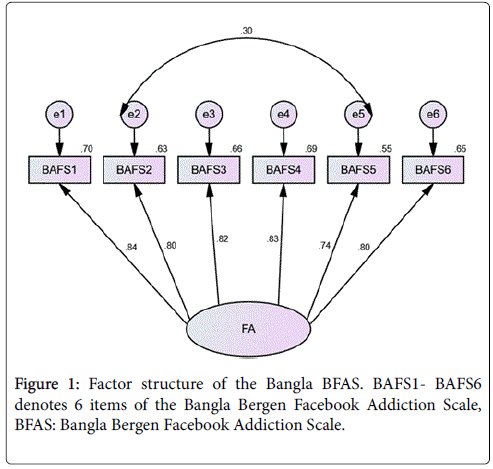 Validation Study of the Bergen Facebook Addiction Scale on a