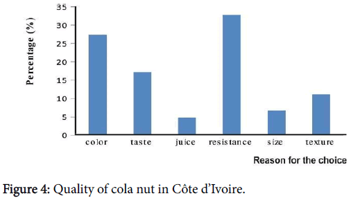 Typology Use and Process of Cola Nut (Cola nitida) Produced