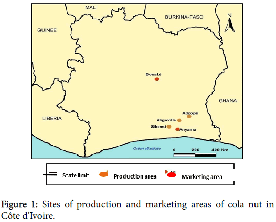 advances-crop-science-technology-marketing-areas-cola