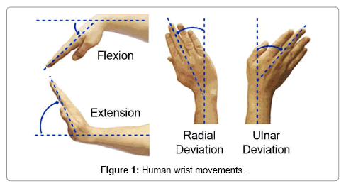 Wrist Movement Detector for ROS Based Control of the Robotic Hand