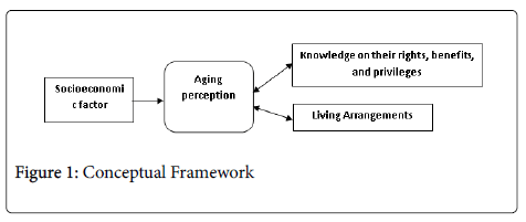 aging-science-Conceptual-Framework