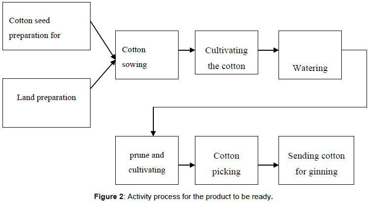 agrotechnology-Activity-process