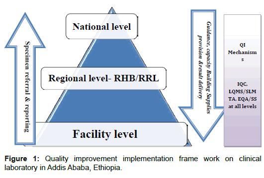 Quality Improvement (QI): A Splendid Driver for Achieving