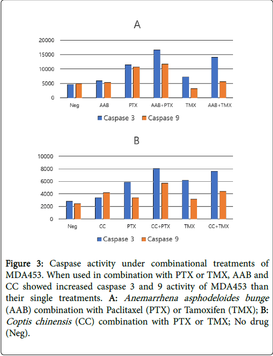 alternative-integrative-medicine-Caspase-activity