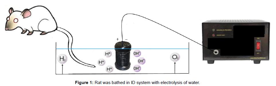 alternative-integrative-medicine-electrolysis-water