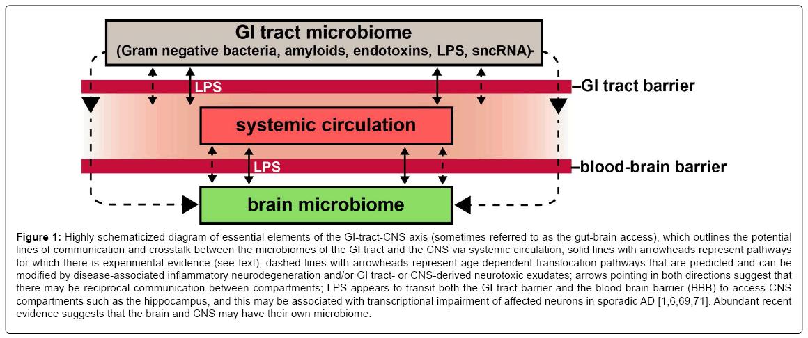 Gastrointestinale (GI) Tract Mikroben und mikrobielle Neurotoxine im ...