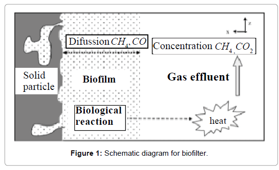 analytical-bioanalytical-techniques-biofilter