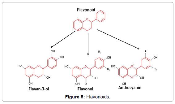 analytical-biochemistry-flavonoids