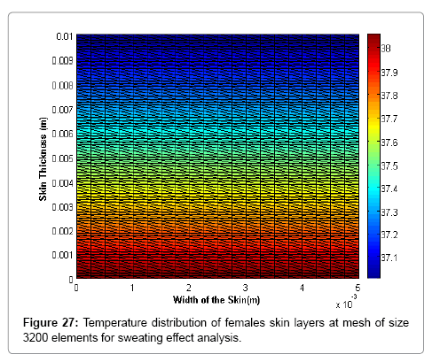 applied-computational-mathematics-females-skin