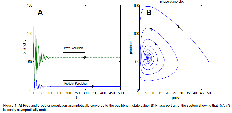 Stability of Prey-Predator Model with Holling type Response Function