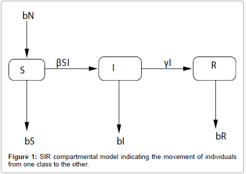applied-computational-mathematics-sir-compartmental-model