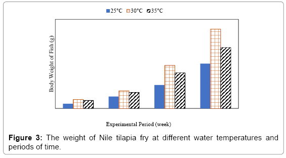 Effect Of Water Temperature On Masculinization And Growth Of Nile