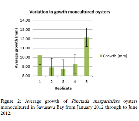aquaculture-research-development-Savusavu-Bay