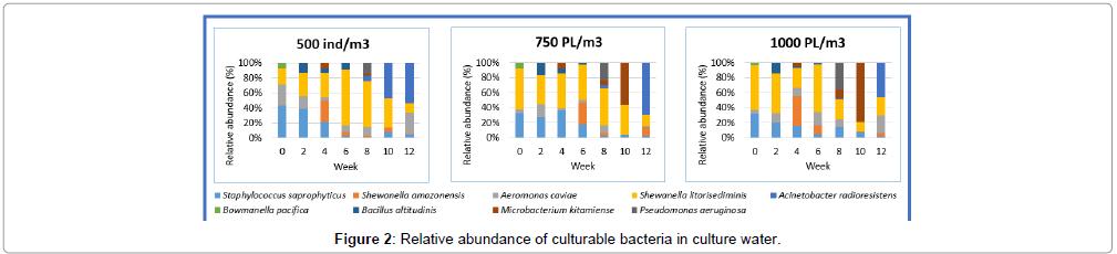 aquaculture-research-development-culturable