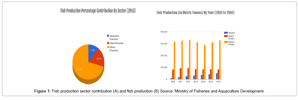 aquaculture-research-development-fish-production