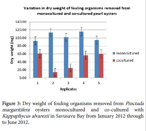 aquaculture-research-development-fouling-organisms