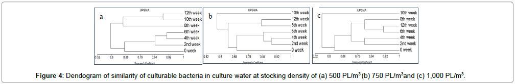 aquaculture-research-development-stocking