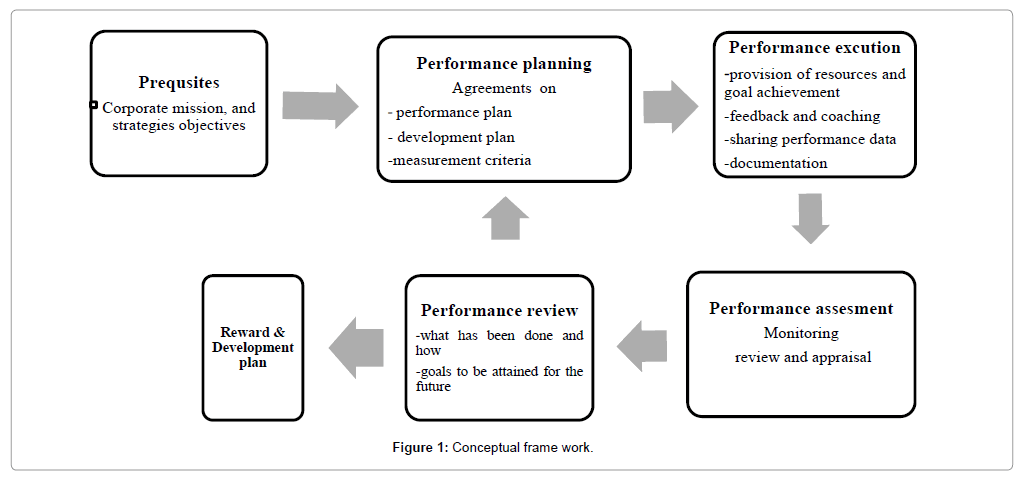 Employee Performance Management System Practices and