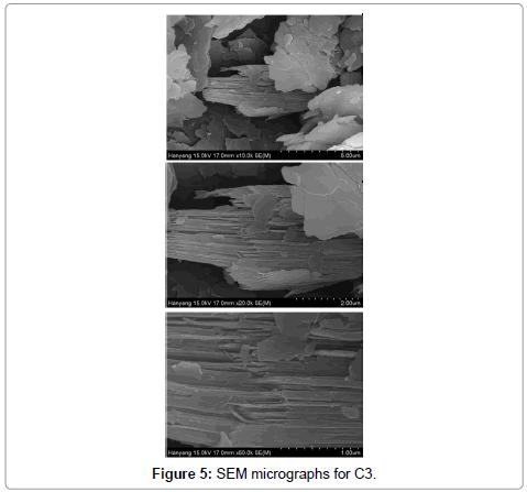 bioceramics-development-applications-SEM-micrographs