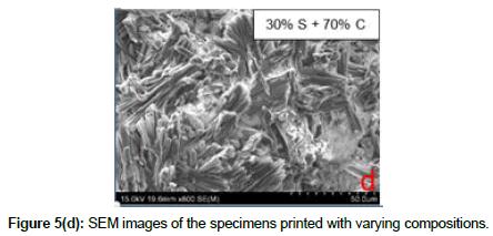 bioceramics-development-applications-compositions
