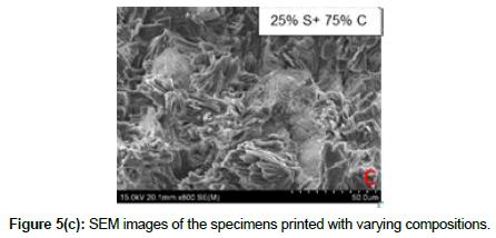 bioceramics-development-applications-images