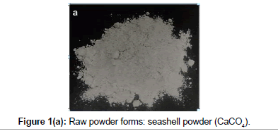 bioceramics-development-applications-seashell-powder