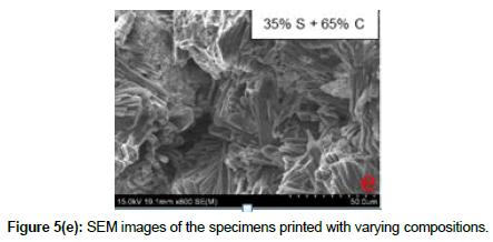 bioceramics-development-applications-specimens