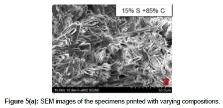 bioceramics-development-applications-specimens-printed