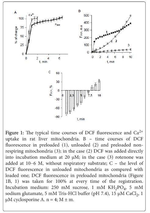 biochemistry-and-analytical-biochemistry-fluorescence
