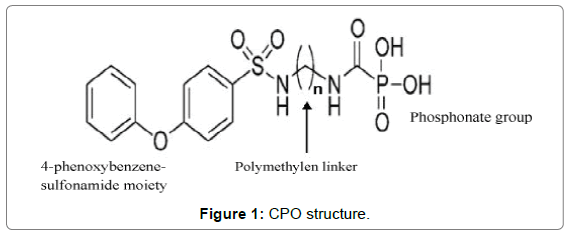 bioequivalence-bioavailability-CPO-structure