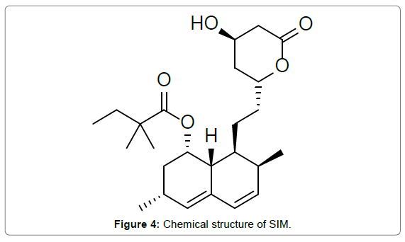 bioequivalence-bioavailability-structure-SIM