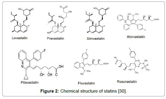 bioequivalence-bioavailability-structure-statins