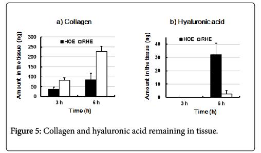 biology-and-medicine-collagen